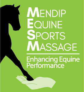 Mendip Equine Sports Massage